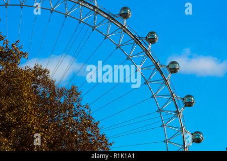 Londra, UK, 13 novembre 2018. Cielo blu sulla London Eye con autunno foglie colorate in primo piano, come visto da di Downing Street. Credito: Dinendra Haria/Alamy Live News Foto Stock