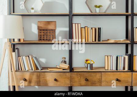 Chiusura del rack in legno con libri in salotto Foto Stock