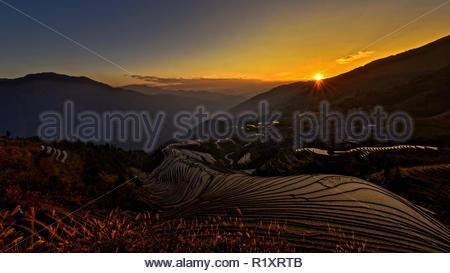 La bellezza di Natura Foto Stock