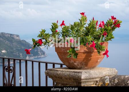 Ravello, Italia. Vista del Mare Mediterraneo con fiori di colore rosso in primo piano. Foto scattata dalla terrazza dell'Infinito presso i giardini di Villa ci