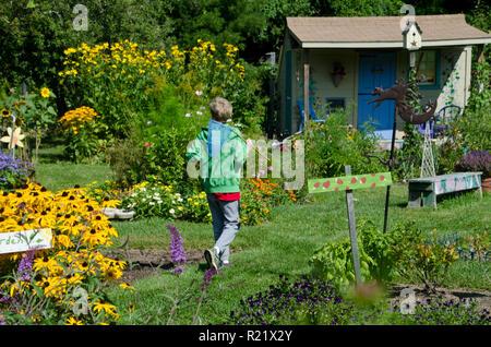 Giovane ragazzo in un colorato giardino comunità con buttefly net sulla caccia, Yarmouth, ME, STATI UNITI D'AMERICA