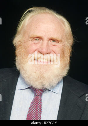 Sessantaduesima London Film Festival - Il Re Outllaw - Premiere con: James Cosmo dove: Londra, Regno Unito quando: 17 Ott 2018 Credit: WENN.com Foto Stock