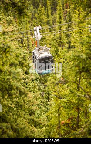 BANFF, AB, Canada - Giugno 2018: una funivia in gondola che viaggiano attraverso la foresta sulla strada per il vertice della Montagna di Zolfo in Banff. Foto Stock
