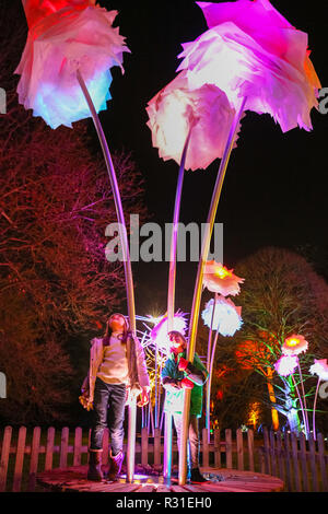 Kew Gardens, Londra, 21 Nov 2018. Due bambini di divertirsi nella incantevole cornice del campo dei fiori illuminato. Tornando al Royal Botanical Gardens di Kew è Natale a Kew, un sentiero illuminato attraverso Kew dopo-paesaggio scuro, illuminata da oltre un milione di luci scintillanti e dotato di spettacolari installazioni luminose e sonore lungo il percorso, con tunnel di luce e, alla fine, la spettacolare Palm House Gran Finale con laser show. (Tutti i modelli di bambino sono stati forniti dalla sede e che il consenso è stato ottenuto) Credito: Imageplotter News e sport/Alamy Live News Foto Stock