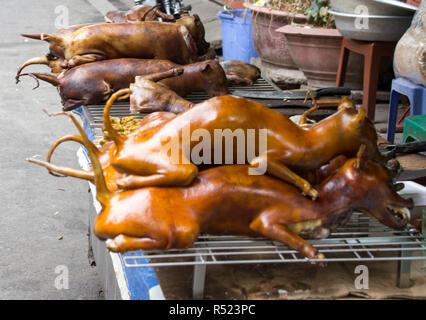 Cucinato Cane Per Acquisti In Stallo Nella Citta Capitale Del