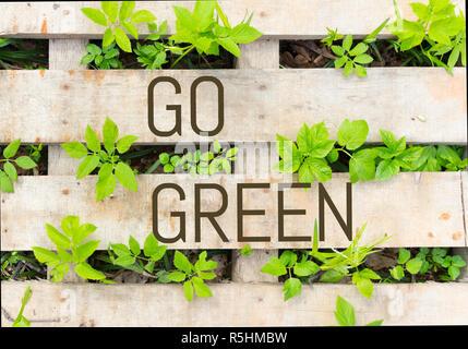 Go Green Concetto di immagine. piante verdi e legno Foto Stock