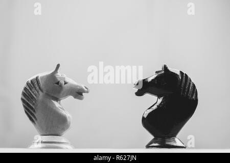 Scacchi cavalieri faccia a faccia su sfondo grigio Foto Stock