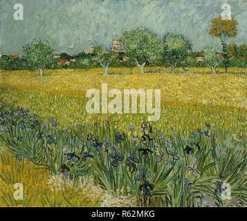 Veld met bloemen bij Arles / campo di fiori vicino a Arles. Data/Periodo: 1888. La pittura. Olio su tela. Altezza: 54 cm (21,2 in); larghezza: 65 cm (25,5 in). Autore: Vincent van Gogh. Foto Stock
