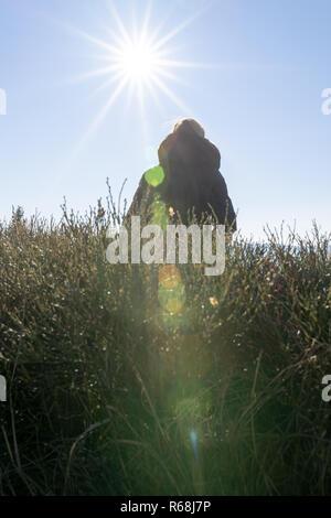 Giovane donna seduta su una panchina backlit contro la luce solare con lensflare pesanti. Foto Stock