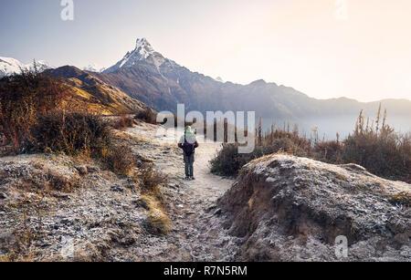 Turistico con zaino godendo la vista della neve montagna himalayana Machapuchare in Nepal Foto Stock
