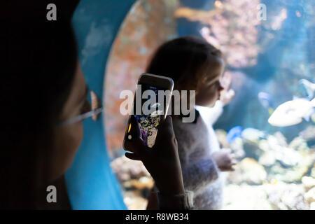 Giovane donna con il bambino guarda un pesce in acquario. Sagome di persone che visitano il grande acquario di Livorno, Italia.