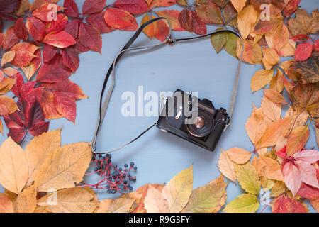 Con foglie variopinte fotocamera su un sfondo di legno Foto Stock
