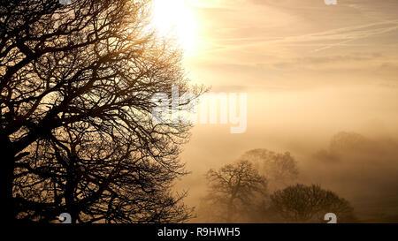 Tramonto su una valle glaciale avvolta nel basso nebbia con alberi in inverno