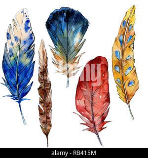 Acquerello uccello dalle piume ala isolato. Disegno ad acquerello piume illustrazione dello sfondo elemento. Foto Stock