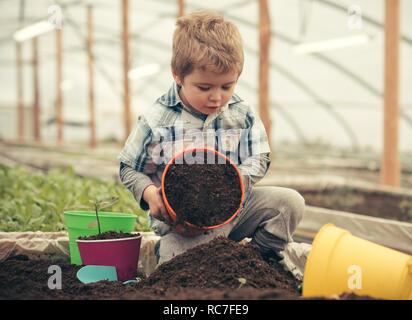 Ecologia cura. ecologia cura dalla piantagione di alberi e fiori. ecologia concetto di cura. capretto piccolo agricoltore preoccuparsi di ecologia. Il regalo perfetto per eny home. Foto Stock