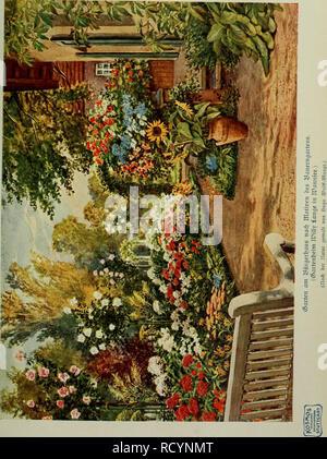 . Das Leben der Pflanze. Piante; piante; piante; Phytogeography. . Si prega di notare che queste immagini vengono estratte dalla pagina sottoposta a scansione di immagini che possono essere state migliorate digitalmente per la leggibilità - Colorazione e aspetto di queste illustrazioni potrebbero non perfettamente assomigliano al lavoro originale. Francé, R. H. (Raoul Heinrich), 1874-1943; Gothan, Walther Ulrich Eduard Friedrich, 1879-1954; Lange, Willy, 1864-. Stoccarda, Kosmos, Gesellschaft der Naturfreunde