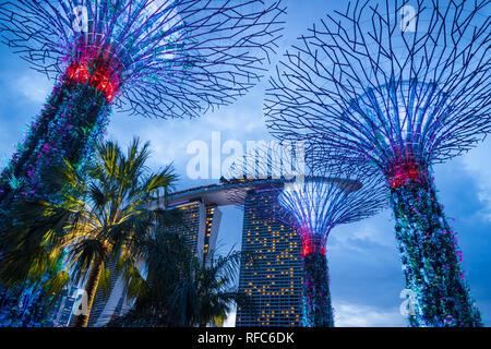 Singapore - Gennaio 2019: giardini dalla baia con il Supertree Grove a Singapore vicino Marina Bay sands hotel di notte Foto Stock