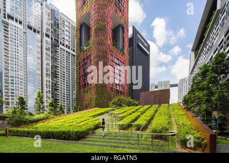 Una signora che cammina lungo i gradini verdi dello spazio architettonico moderno fuori dai locali della Torre Guoco. Foto Stock