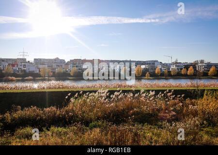 15.11.2018, Dortmund, Renania settentrionale-Vestfalia, la zona della Ruhr, Germania - rinaturato Emscher presso il lago di Phoenix, Lago di Phoenix è un lago artificiale sulla ex Foto Stock