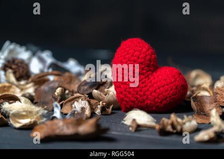 Fatto a mano cuore rosso realizzato in filato con foglie essiccate e fiore posto su tavoli in legno nero. concetto di amore e il giorno di San Valentino. Copia spazio per il testo