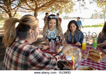 Famiglia Latinx godendo di pranzo a barbecue nel parco Foto Stock