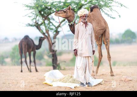 Uomini indiano e il suo cammello nel deserto di Thar durante il Pushkar Camel Mela vicino alla città santa di Pushkar. Questa fiera è il cammello più grande fiera commerciale al mondo.