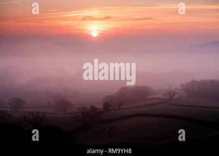 Marshwood Vale, Dorset, Regno Unito. 14 febbraio 2019. Regno Unito Meteo: la mattina presto la nebbia sale dai campi di Marshwood Vale su ciò che promette di essere una meravigliosamente caldo e soleggiato il giorno di San Valentino. Credito: Celia McMahon/Alamy Live News Foto Stock