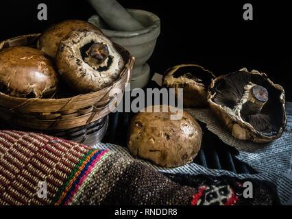 Cesto di funghi freschi fotografia scuro