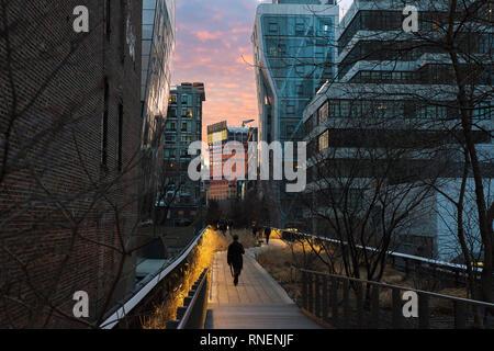 La gente che camminava sulla linea alta, nella città di New York.