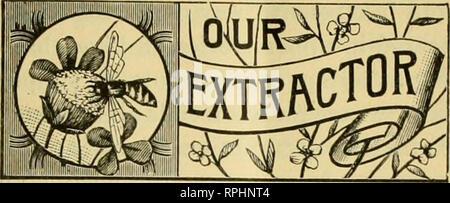 """. La American bee keeper. Bee cultura; miele. 1895. La American apicoltore. 211. (Dall'American Bee Journal.) API edificio malato-SHAPEfir OOMBS, ecc. Da (4. M. DOOLITTLE, una corrispondente mi scrive questo : """" Ho una colonia di api che ha costruito belle, sottilmente-disegnato, bella pettini in le sezioni centrali dei melari, mentre l esterno sezioni contenute alcune delle più pesante e più mal formata pettini che io abbia mai visto. Può dirmi il motivo per cui questo è così ? Si prega di rispondere attraverso la American Bee Journal, come ho prendere quella carta."""" qualcosa di questo tipo è stato detto prima nel nostro bee-paper, una Foto Stock"""