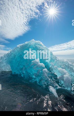 Iceberg Breidamerkursandur sulla spiaggia di sabbia nera, al di sotto di Jokulsarlon. Sudhurland, sud est dell'Islanda.