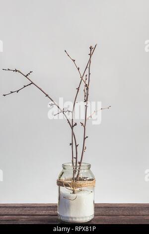 Rami fioriti in un vaso con le uova di pasqua come decor. In arrivo in primavera. Concetto di pasqua. Il vasetto di vetro sulla scrivania di legno isolata contro uno sfondo bianco. Copia Foto Stock