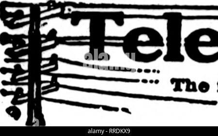. Fioristi' review [microformati]. Floricoltura. 70 i fioristi^ Revisione Luglio 21, 1921. Si prega di notare che queste immagini vengono estratte dalla pagina sottoposta a scansione di immagini che possono essere state migliorate digitalmente per la leggibilità - Colorazione e aspetto di queste illustrazioni potrebbero non perfettamente assomigliano al lavoro originale. Chicago : fioristi' Pub. Co Foto Stock