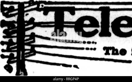 . Fioristi' review [microformati]. Floricoltura. 70 i fioristi' Revisione Luglio 1, 1920. Si prega di notare che queste immagini vengono estratte dalla pagina sottoposta a scansione di immagini che possono essere state migliorate digitalmente per la leggibilità - Colorazione e aspetto di queste illustrazioni potrebbero non perfettamente assomigliano al lavoro originale. Chicago : fioristi' Pub. Co Foto Stock
