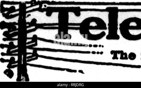 . Fioristi' review [microformati]. Floricoltura. 70 i fioristi^ Review APttii- 1, 1920. Si prega di notare che queste immagini vengono estratte dalla pagina sottoposta a scansione di immagini che possono essere state migliorate digitalmente per la leggibilità - Colorazione e aspetto di queste illustrazioni potrebbero non perfettamente assomigliano al lavoro originale. Chicago : fioristi' Pub. Co Foto Stock