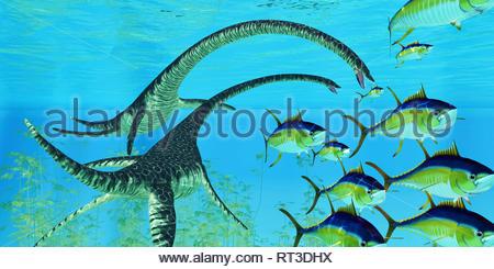 Tonno albacora tenta di sfuggire alle ganasce di due Elasmosaurus rettili. Foto Stock