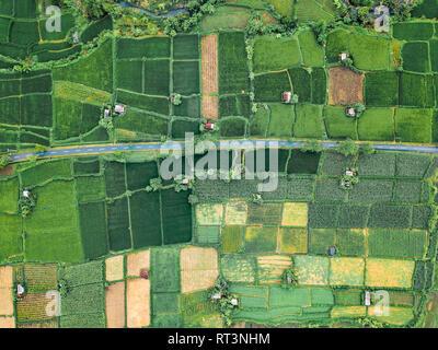 Indonesia, Bali, Keramas, vista aerea di campi di riso Foto Stock