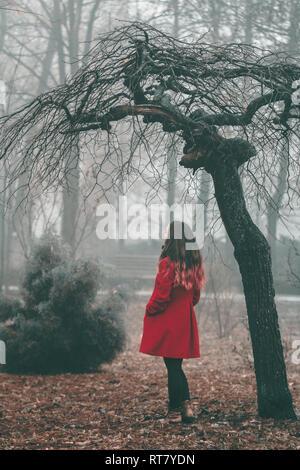 Red Riding Hood in attesa nella foresta Foto Stock