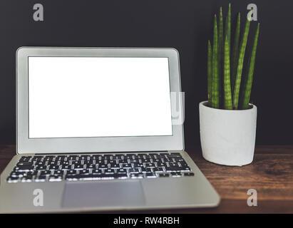 Computer portatile con vuoto display bianco e vasi di piante succulente sulla scrivania di legno contro uno sfondo scuro Foto Stock