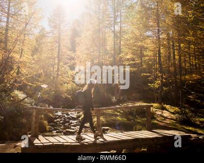 Donna di esplorare la foresta, Antronapiana, Piemonte, Italia Foto Stock