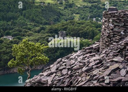 Dolbadarn Castle e Llyn Peris da Dinorwic cava di ardesia, Snowdonia National Park, North Wales, Regno Unito Foto Stock