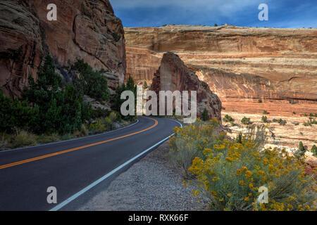 Colorado National Monument, Colorado, STATI UNITI D'AMERICA
