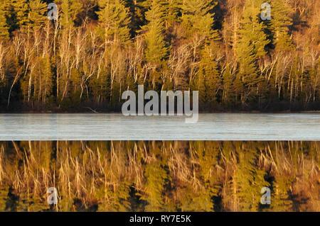 Riflessioni e ghiaccio su Connery Pond in Montagne Adirondack, dello Stato di New York Foto Stock