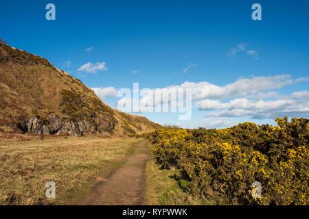San Ciro Riserva Naturale Nazionale, Aberdeenshire, Scozia. Foto Stock