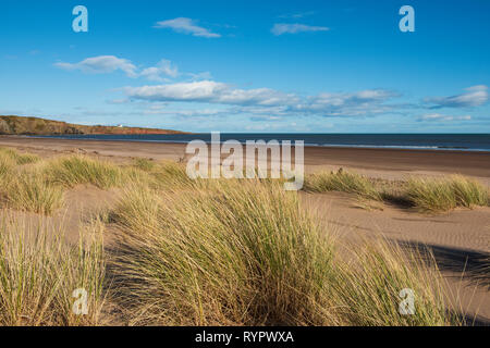 San Ciro beach, Aberdeenshire, Scozia. Foto Stock