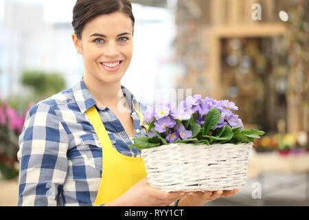 Fiorista sorridente Donna con cesto in vimini pieno di violetta primrose fiori, concetto di primavera Foto Stock