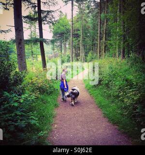 Ragazzo e cane sul bosco a piedi. Foto Stock