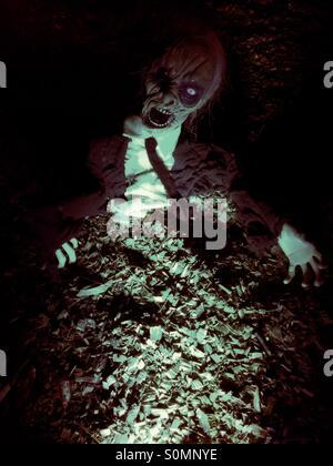 Zombie artigliando la sua strada di ritorno dalla tomba Foto Stock