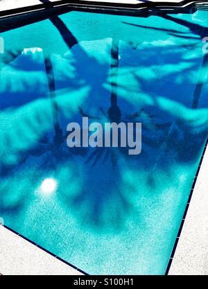 Le palme ed il sole si riflette in modo chiaro il turchese blu piscina Foto Stock