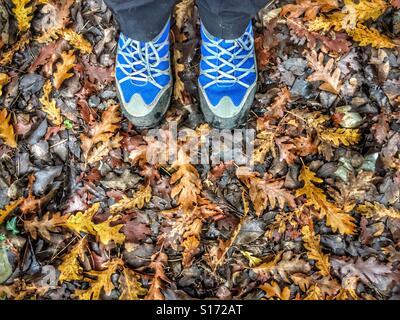 ... Un paio di scarpe da escursionismo in piedi sul bagnato Foglie di  autunno Foto Stock 2f5734068e7
